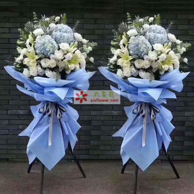 10枝白色玫瑰,19枝白色桔梗,4朵百合,3朵蓝色绣球花,配叶丰满