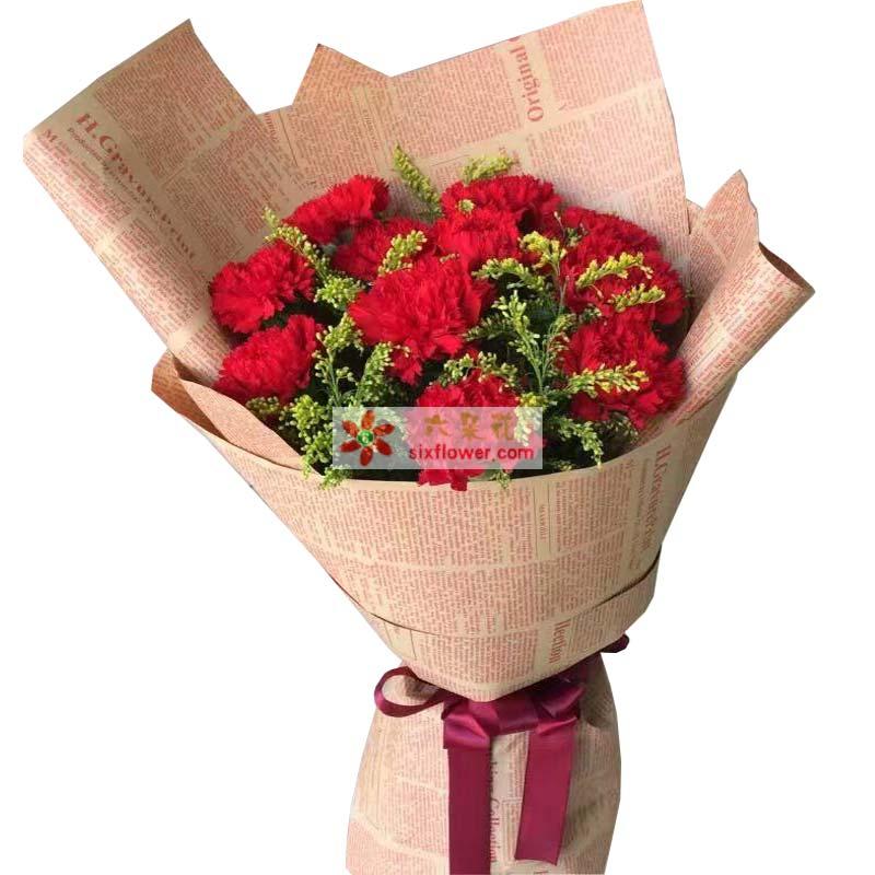 11枝红色康乃馨,黄英丰满