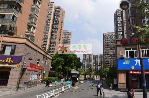 送花到杭州拱墅区通益路吉如家园9幢