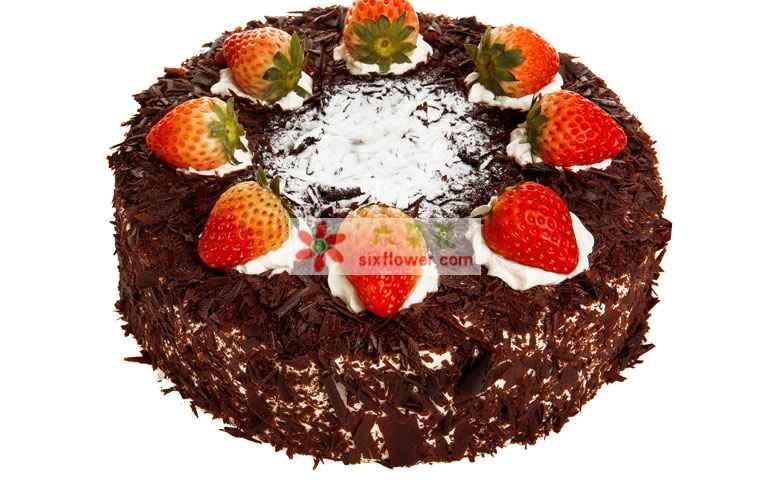 8寸巧克力圆形黑森林鲜果味蛋糕