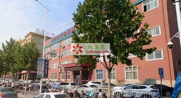郑州市妇幼保健院附近