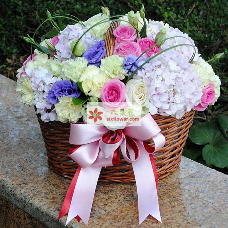 6枝白色玫瑰,16枝粉色玫瑰,8枝黄色康乃馨,4枝浅粉色绣球花,洋桔梗搭配(紫色、绿色)