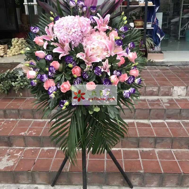 20枝粉色玫瑰,3朵粉色绣球花,紫色桔梗,散尾葵,橛子叶等搭配;