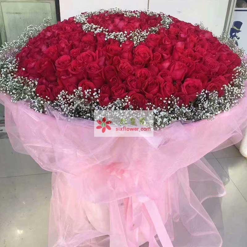 520枝红色玫瑰,周围满天星点缀,中间用满天星围成心形;