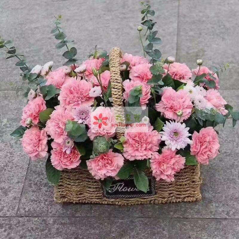 33枝粉色康乃馨,尤加利、小雏菊点缀,栀子叶搭配;