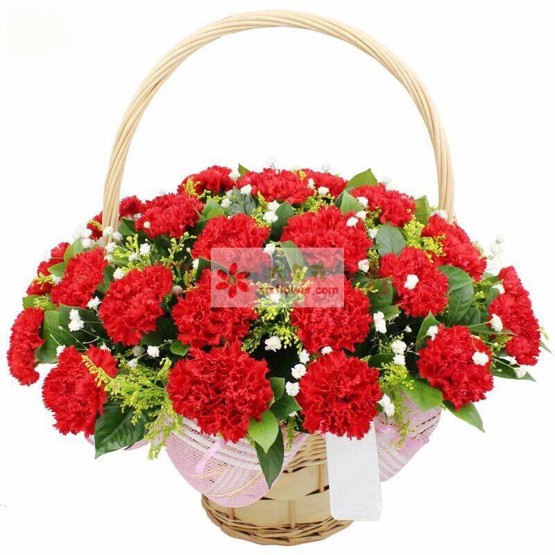 29枝红色康乃馨,满天星、黄英、栀子叶丰满