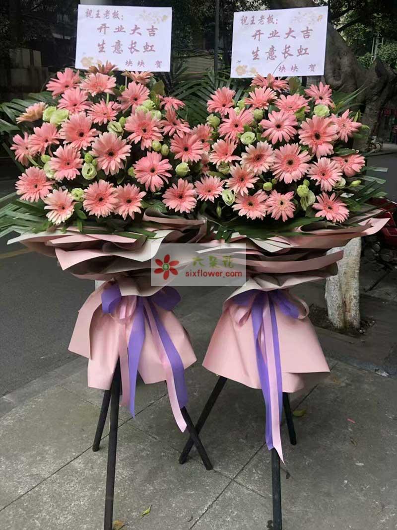 26朵粉色扶郎花,12朵桔梗,散尾葵搭配