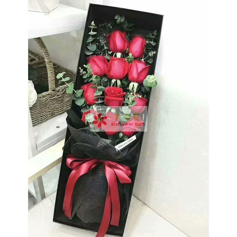 11枝红玫瑰,尤加利丰满