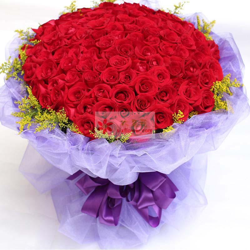 99枝红玫瑰,周围黄英点缀