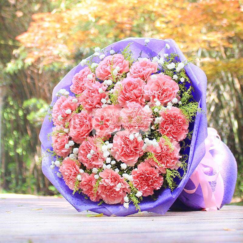19朵粉色康乃馨,满天星、黄英丰满