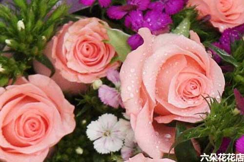 教师节送玫瑰花