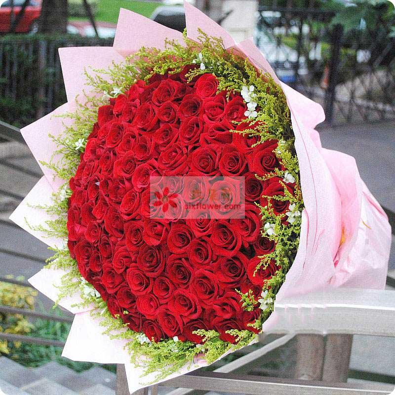 99朵红玫瑰,周围黄英、相思梅点缀
