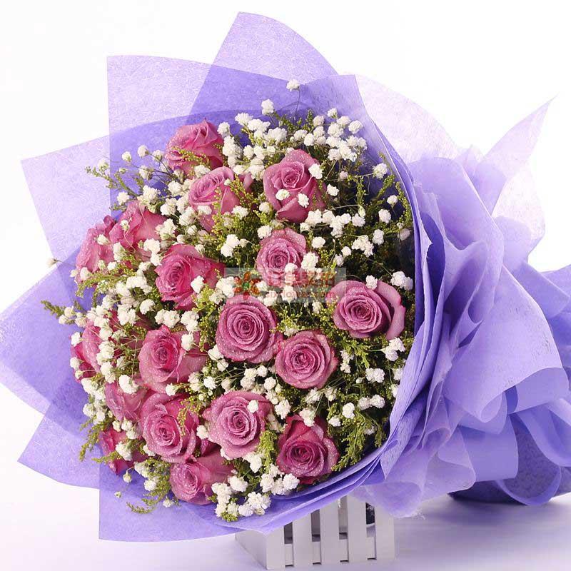 18朵紫玫瑰,满天星、黄英丰满