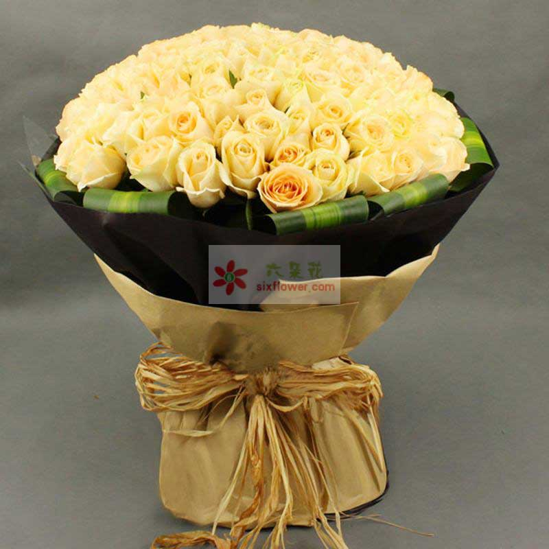 99朵香槟玫瑰,周围巴西叶包裹