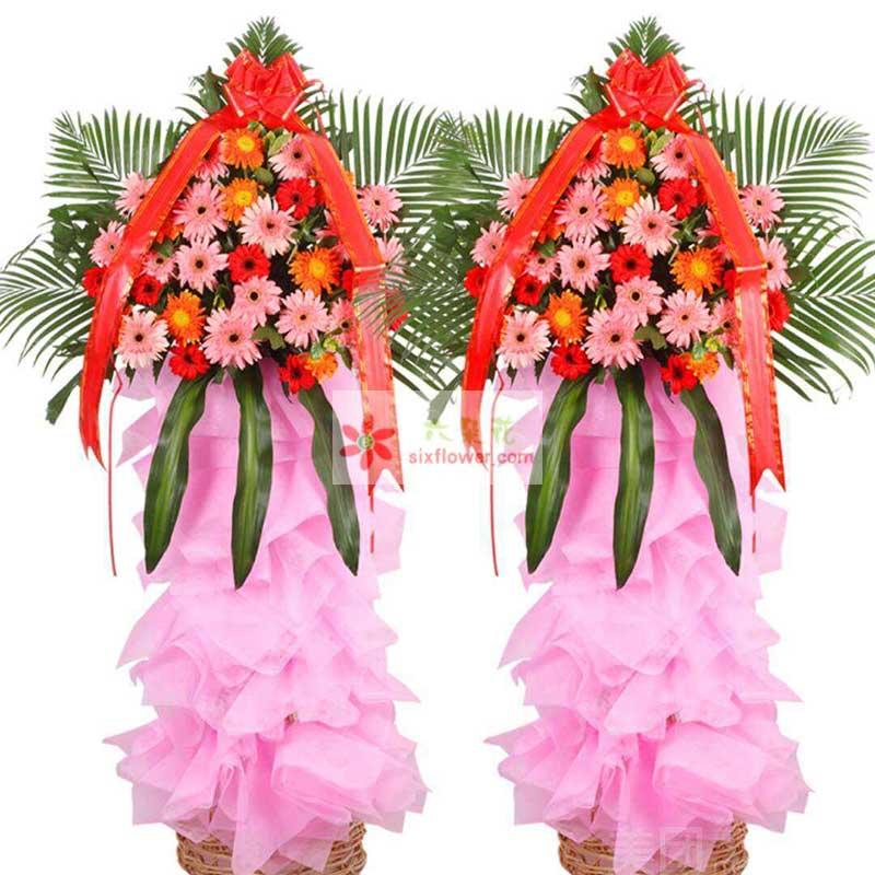 30朵各色扶郎花,散尾葵、巴西叶搭配