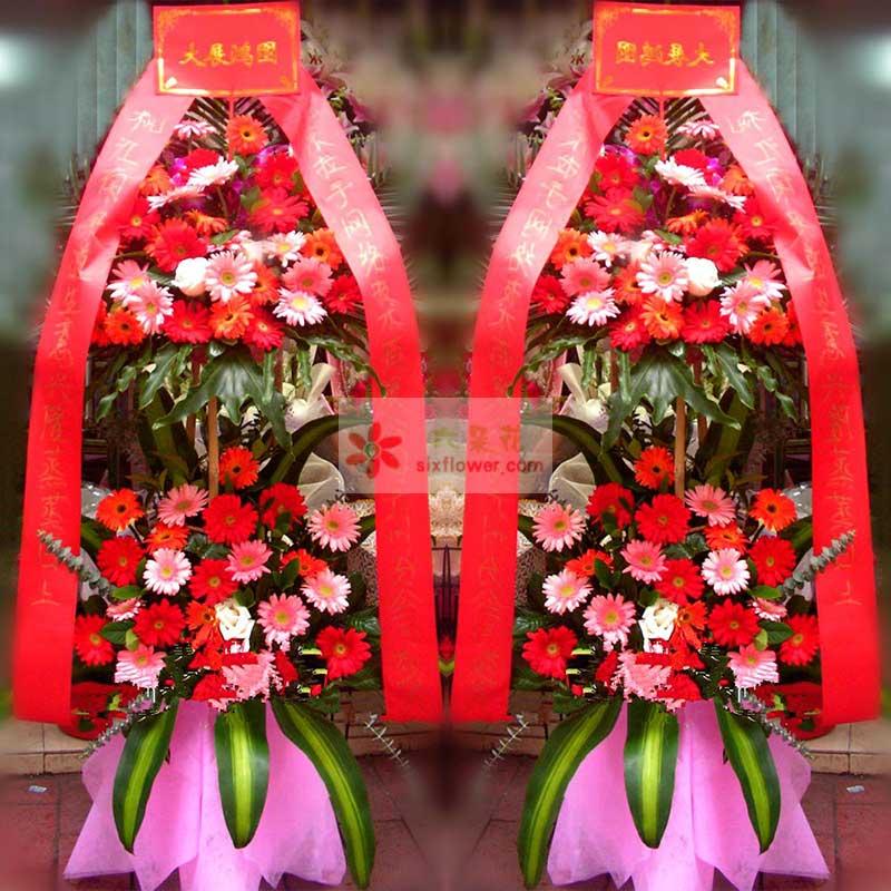 48朵各色扶郎花,4朵粉玫瑰,尤加利点缀,巴西叶、配叶点缀