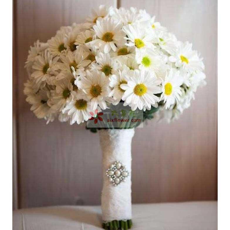 30朵雏菊
