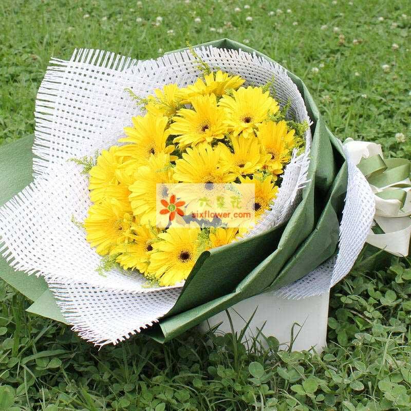 16朵黄色扶郎花,黄英点缀