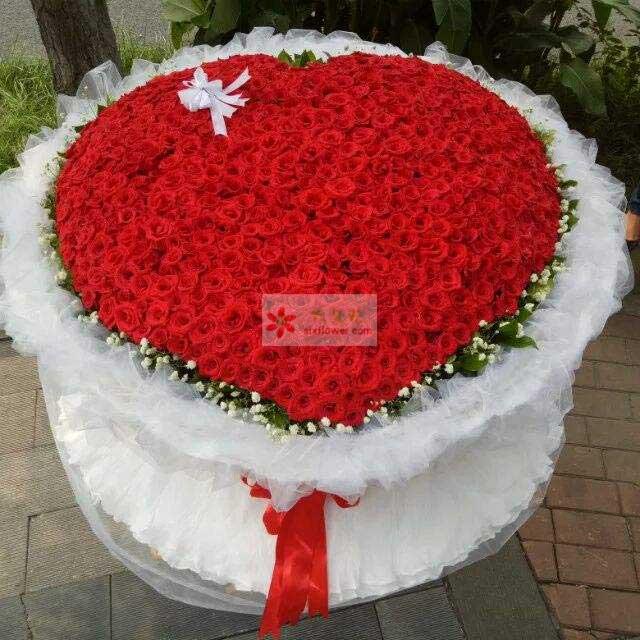 999朵红玫瑰,白色拉花,周围栀子叶、白色满天星点缀