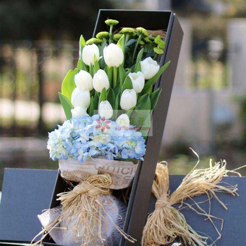 11朵白色郁金香,1朵蓝色绣球花,小雏菊丰满