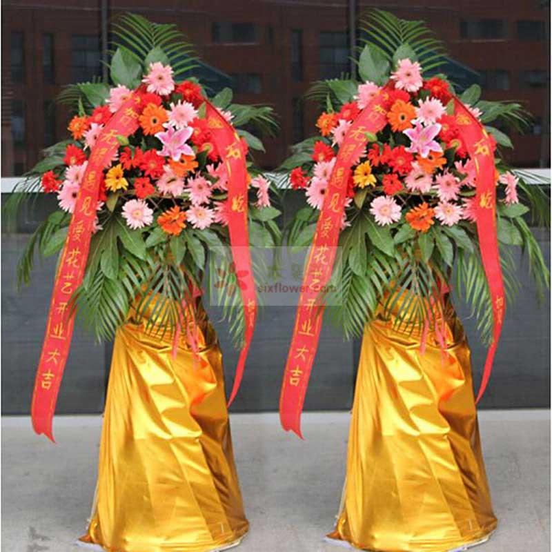 30大朵各色扶郎花,1朵粉色百合,配叶、散尾葵搭配