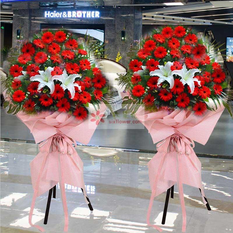 40朵红色扶郎花,3朵白色百合花,散尾葵搭配