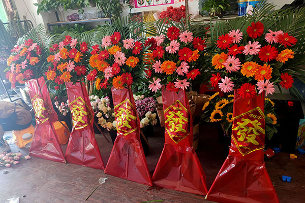 广州夏花一路花店