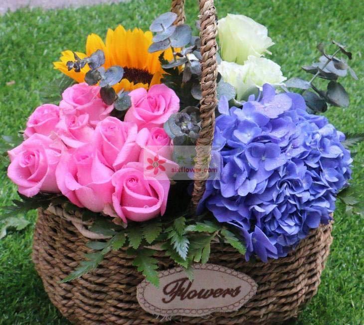 9朵戴安娜玫瑰,2朵向日葵,1只蓝色绣球花,9朵桔梗花,尤加利、配叶点缀