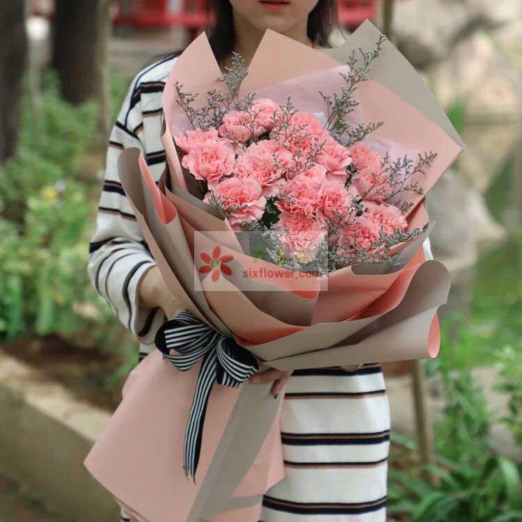 19朵粉色康乃馨,情人草丰满