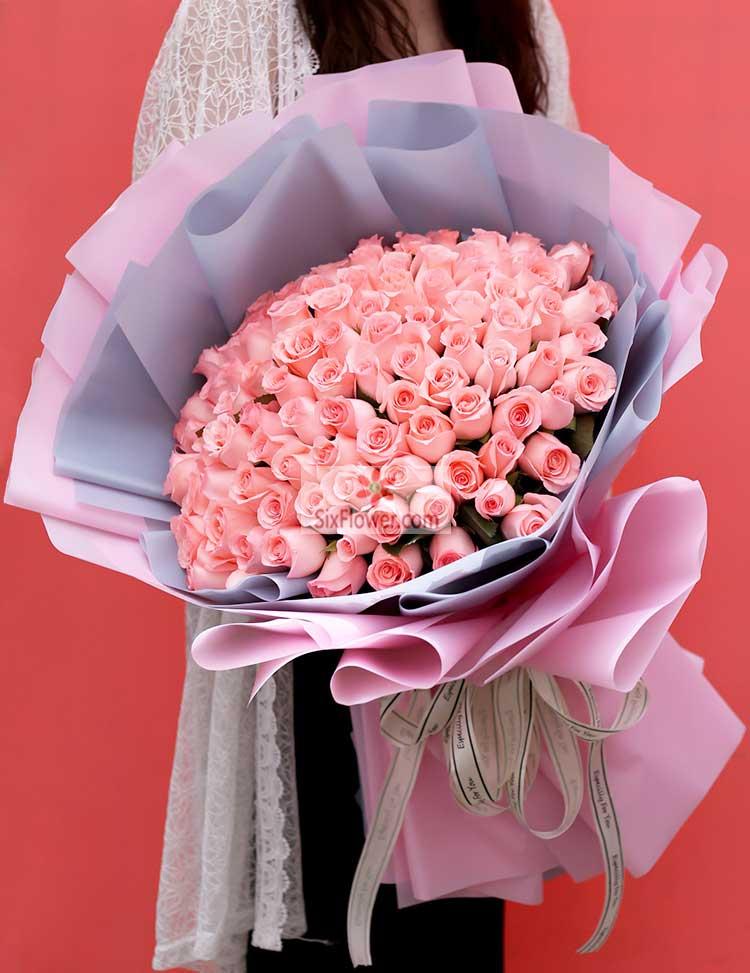 66朵戴安娜粉玫瑰
