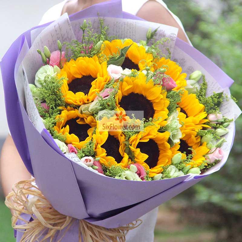 9朵向日葵,22朵桔梗,其中粉色、绿色桔梗混,黄英丰满