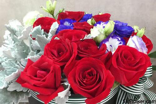70朵玫瑰的花语是什么?70朵玫瑰代表什么意思?