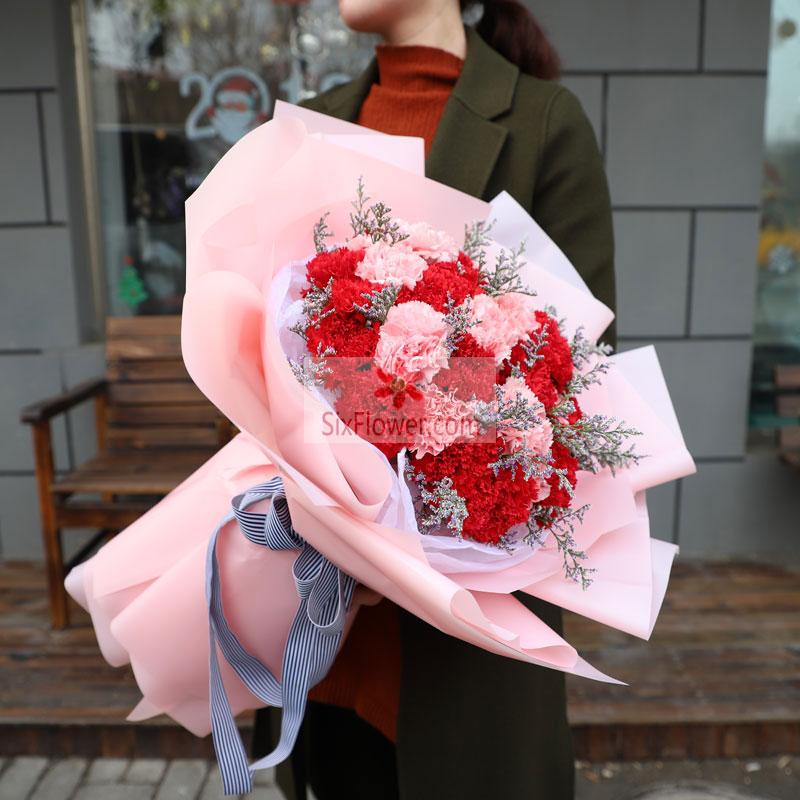 19朵康乃馨,其中红色和粉色混搭,情人草点缀;