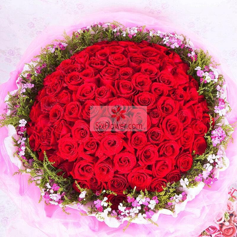 96朵红玫瑰,周围相思梅,快乐随你心想
