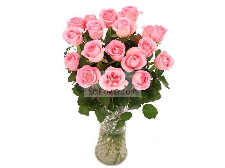 18朵戴安娜粉玫瑰,瓶插花,永远属于你