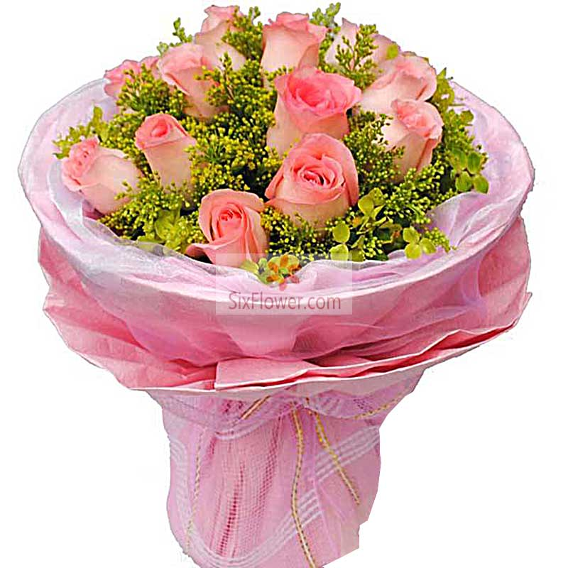 14朵粉玫瑰,我的爱只为了你存在