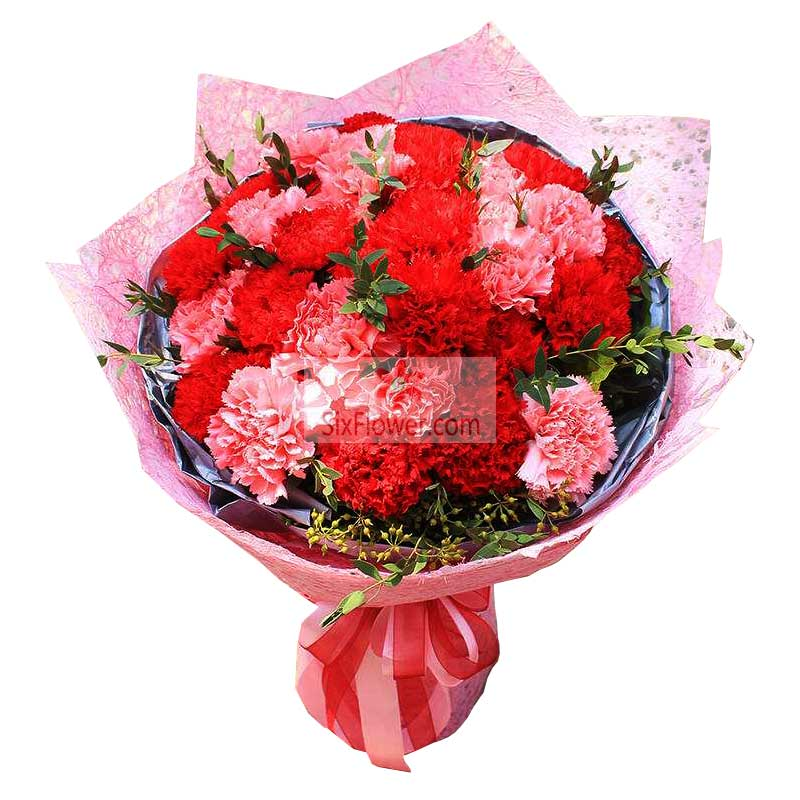 29朵康乃馨,您的爱如此伟大