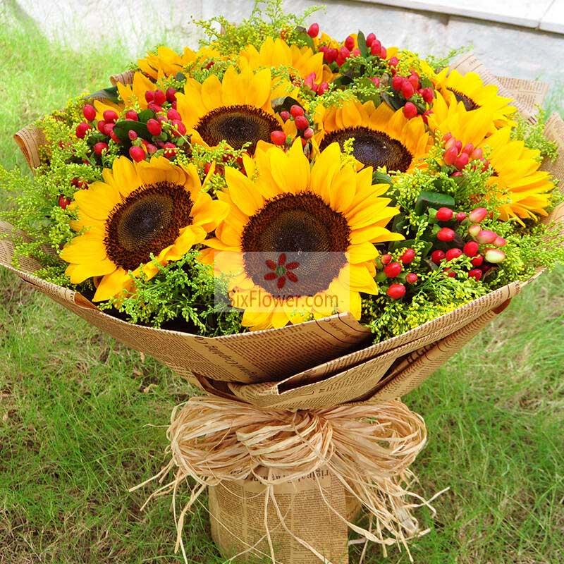 9朵向日葵,耀眼的火花