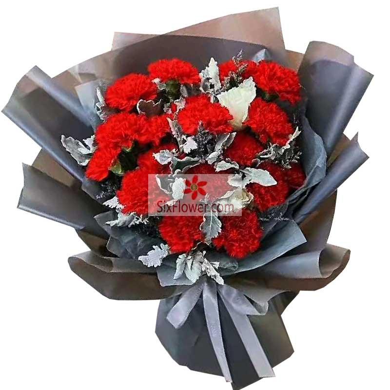 19朵红色康乃馨,每天都拥抱快乐和健康