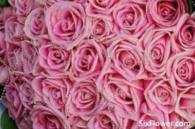 七夕节是送33朵玫瑰花好还是送21朵玫瑰好?