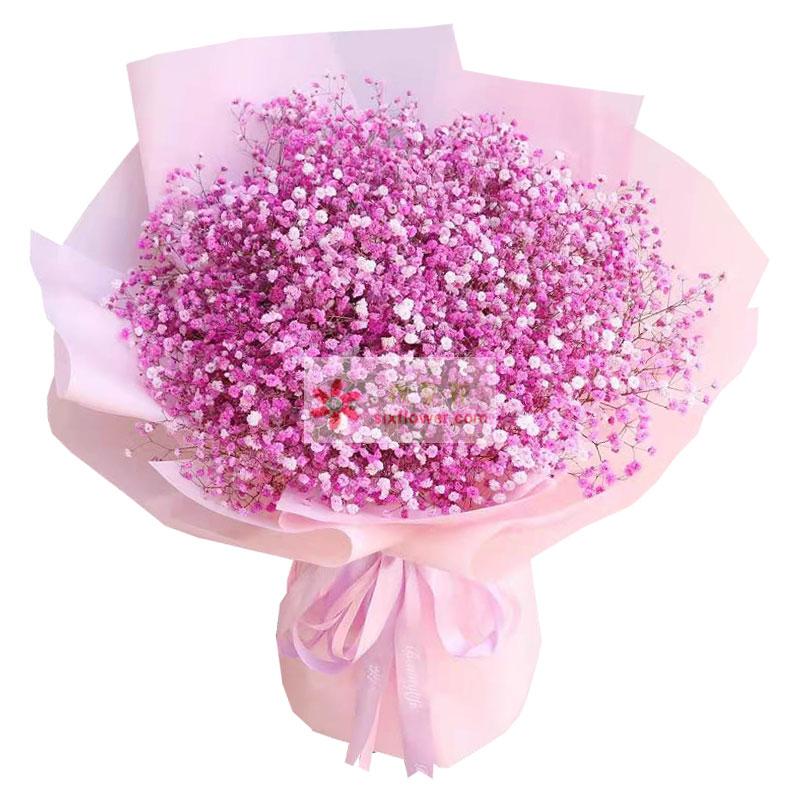 粉色满天星一大扎,一生来守侯的爱人