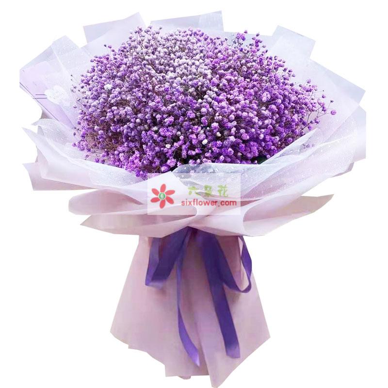 一大扎紫色满天星,我的真心