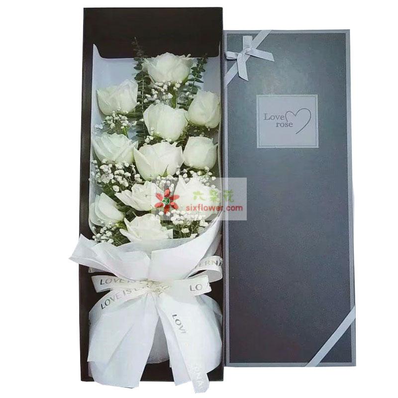11朵白玫瑰礼盒,默默地追随着你