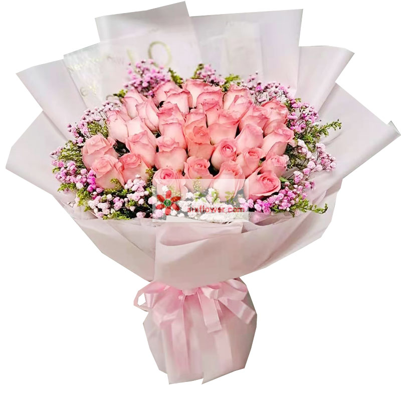 29朵戴安娜粉玫瑰,一生一世不分离