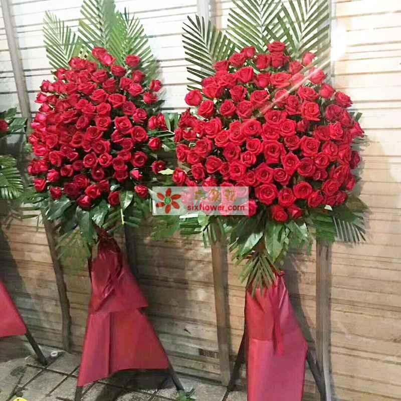 60枝红色玫瑰,散尾葵搭配