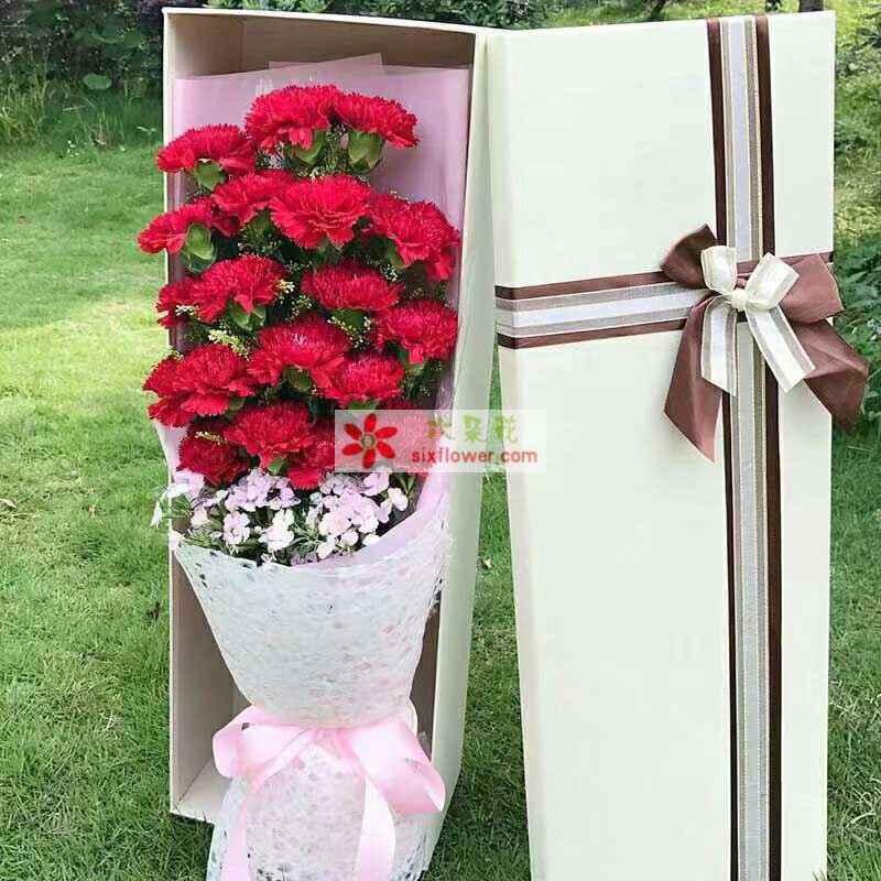 18枝红色康乃馨,相思梅点缀