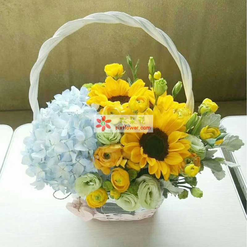10枝桔梗,2枝蓝色绣球花,银叶菊点缀,6枝洋牡丹(或香槟玫瑰),配叶丰满