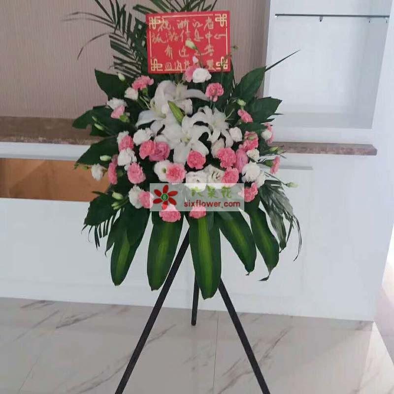 22枝粉色康乃馨,19枝桔梗,4朵百合,巴西叶、配叶搭配