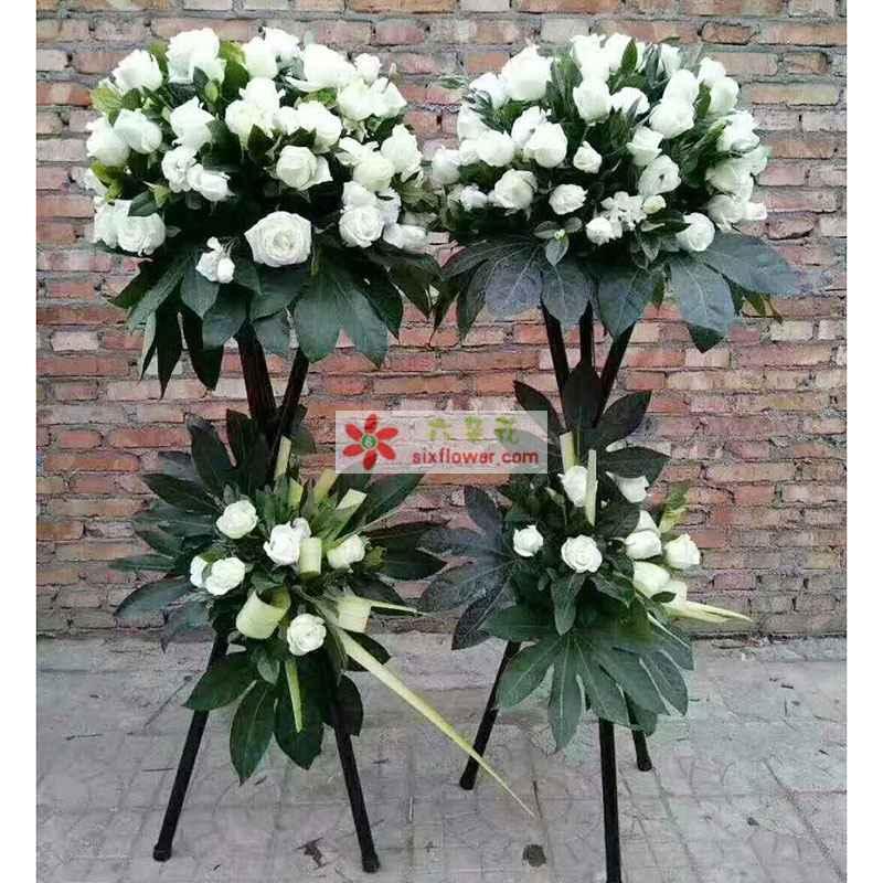 48枝白色玫瑰花,配叶搭配