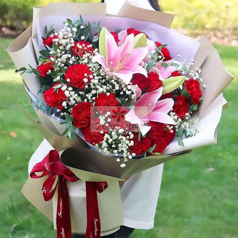 26朵红色康乃馨,2支粉色多头百合,您是动听的旋律